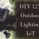 DIY Low-Voltage Outdoor Lighting Controlled Using Raspberry Pi