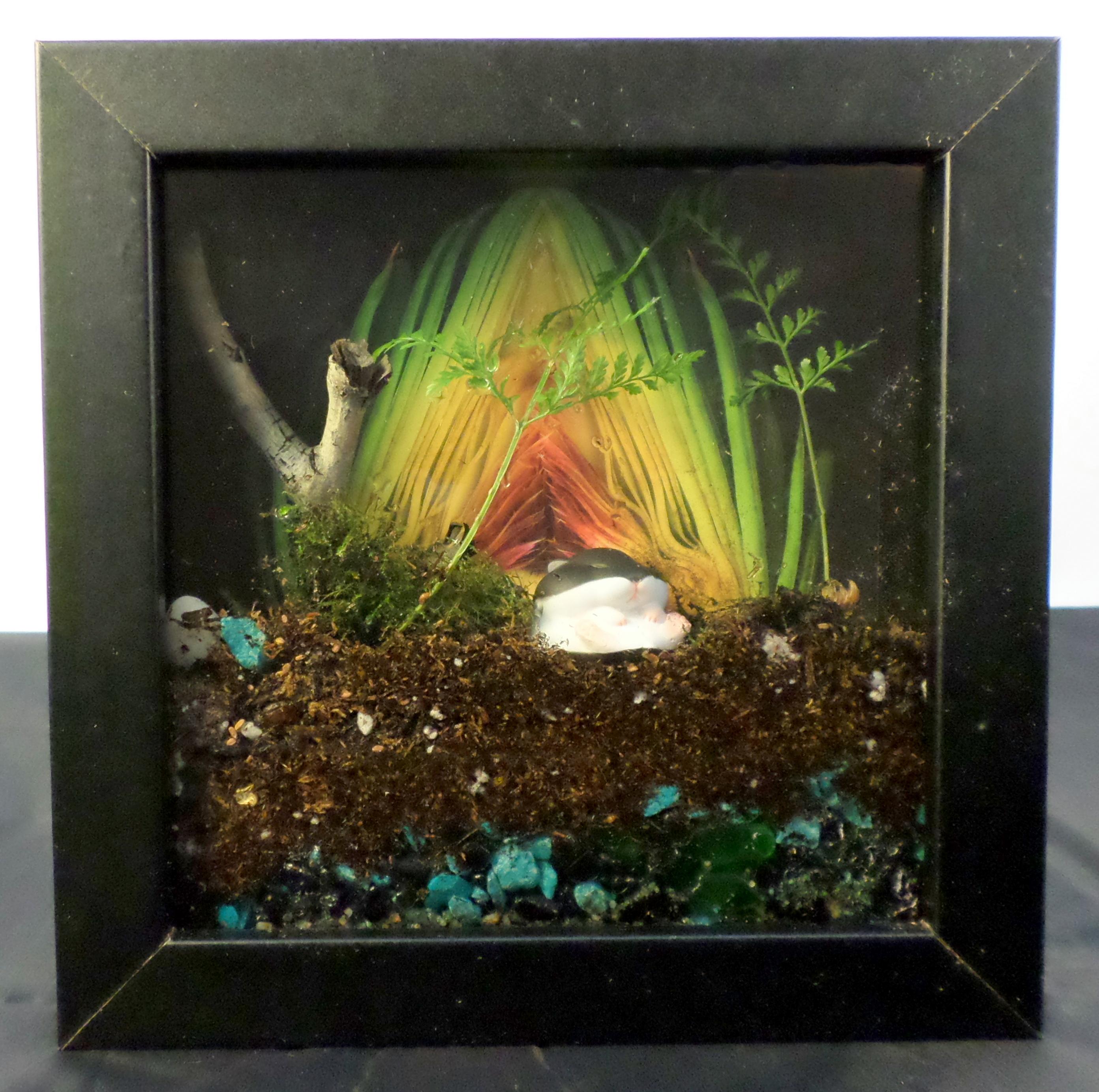 Picture of Picture Frame Terrarium
