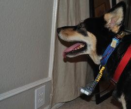 Sonar Collar for Blind Dogs