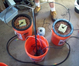 How To Make A Multiple Bucket Top Feed Hydroponic Grow System
