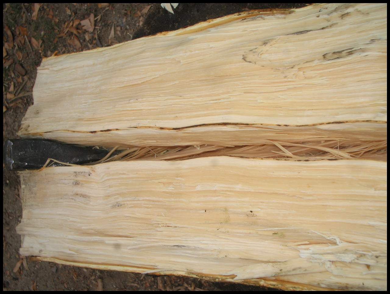 Picture of Splitting the Log