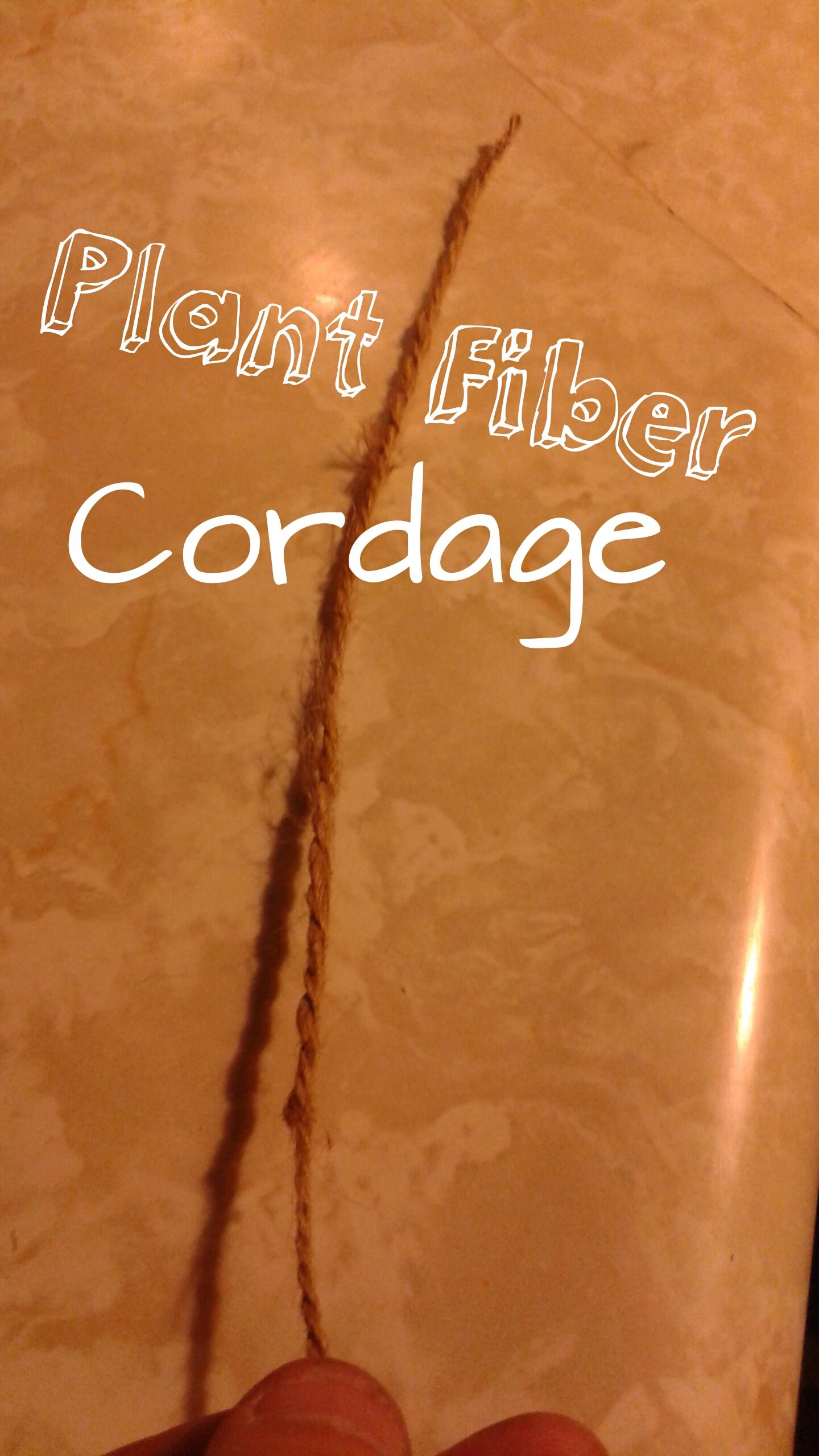 Picture of Plant Fiber Cordage