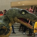 Life Size Raptor Head From Jurassic Park (part of Full Costume)