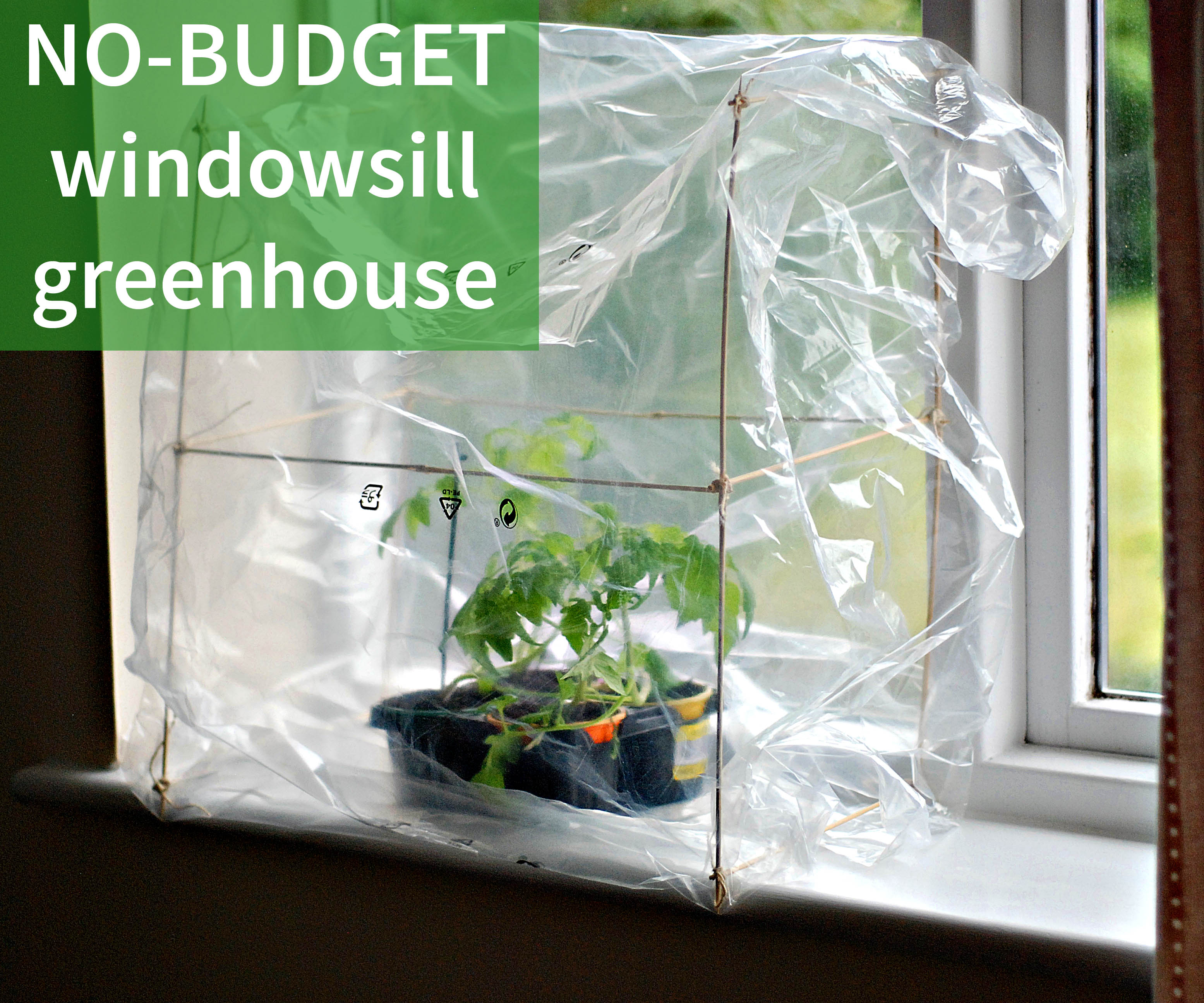 Picture of No-Budget Windowsill Greenhouse