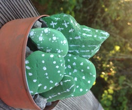 Mini Cactus Rock Garden