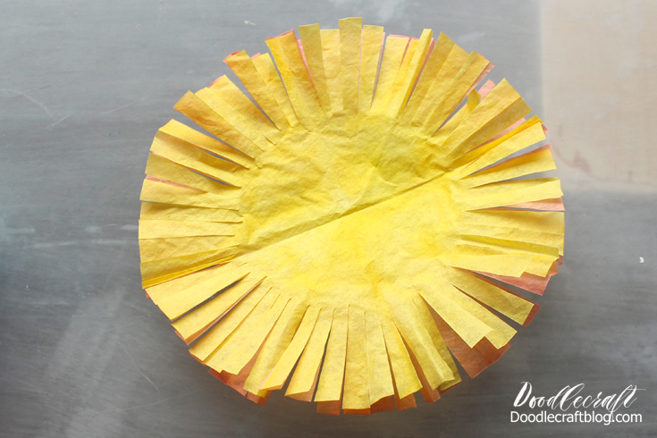 Picture of Cut the Coffee Filters