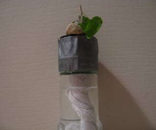 Make a Super-easy Hydroponics System!