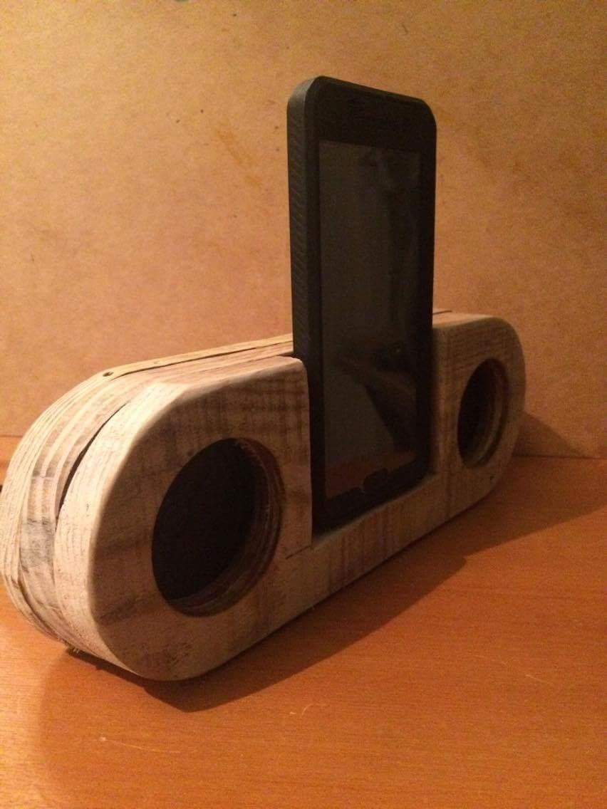 Picture of DIY Simple Pallet Speaker