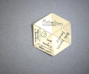 How to Make a Hexaflexagon