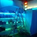 LED Shelf with Traffic Light
