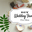 DIY Cheap and Creative Wedding  Favors