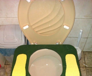 A Healthier Toilet at Home