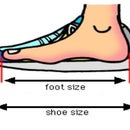 How to Find Perfect Sport Shoes Size