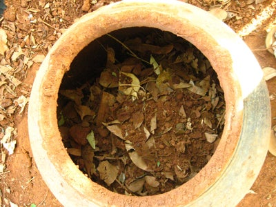 Fill the Pot With Organic Waste