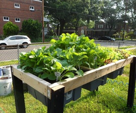 Self-Watering Veggie Table