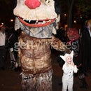 'Carol' from 'Where the wild things are'(Movie) Costume
