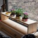 Plank Planter