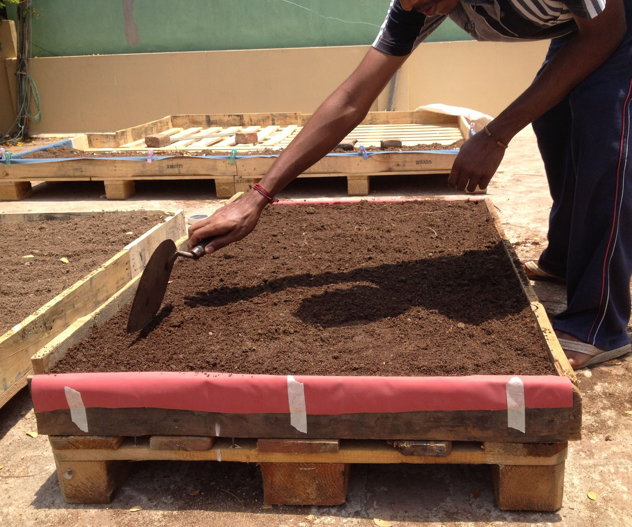 The Ultimate Terrace Garden: Square Foot Pallet One Gardening System ...
