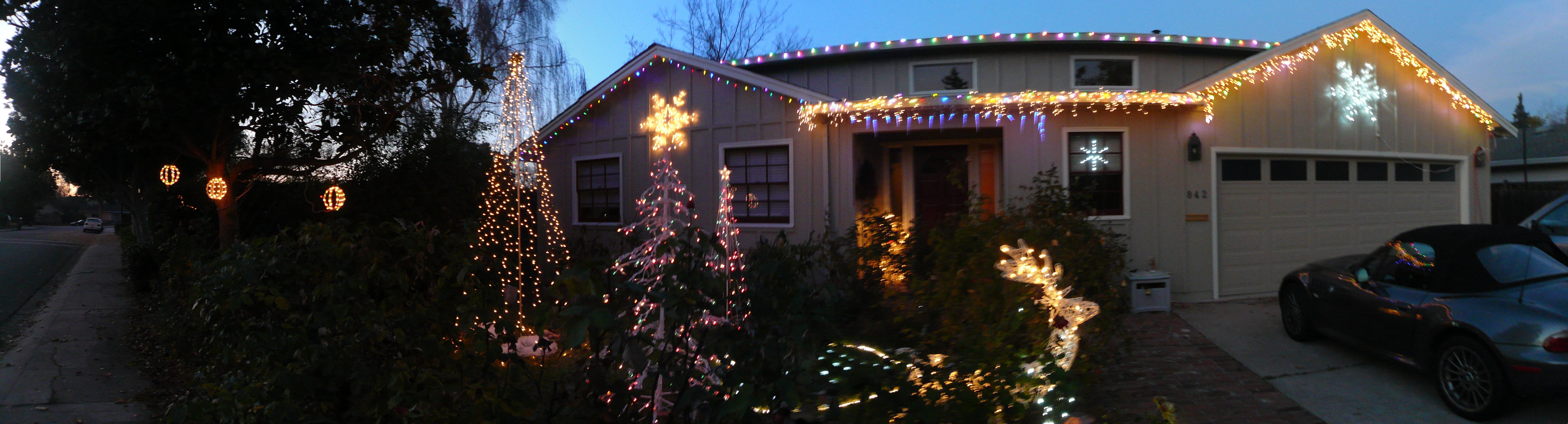 Picture of Outdoor String-of-Lights Tree for the Holidays.
