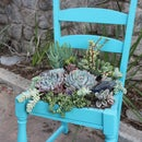 Upcycle Succulent Chair