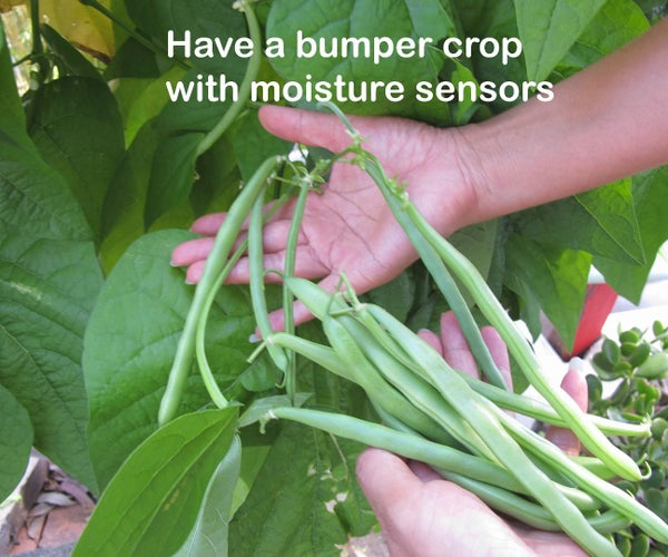 Have a Bumper Crop With Moisture Sensors and ARDUINO