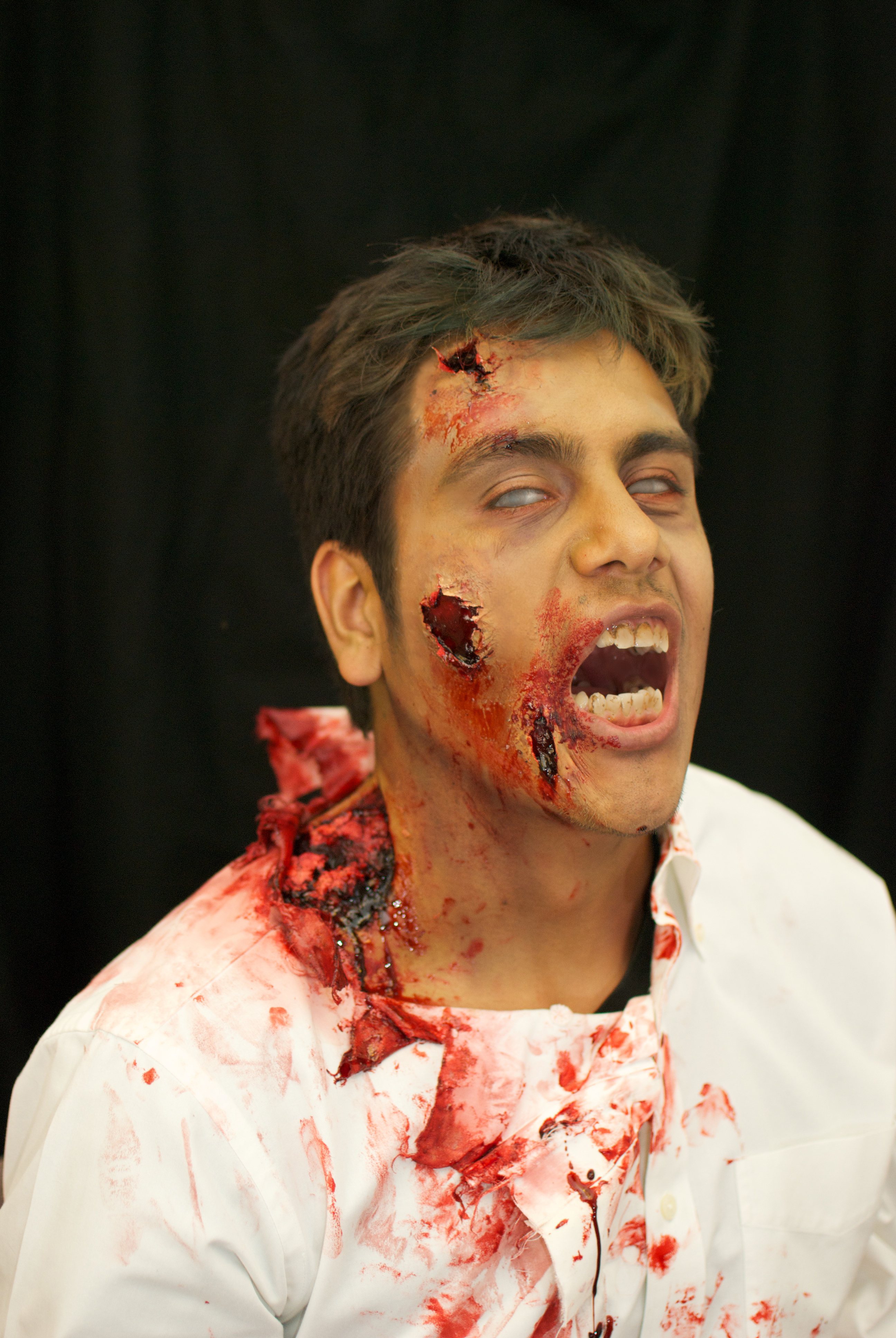 Picture of Zombie Makeup