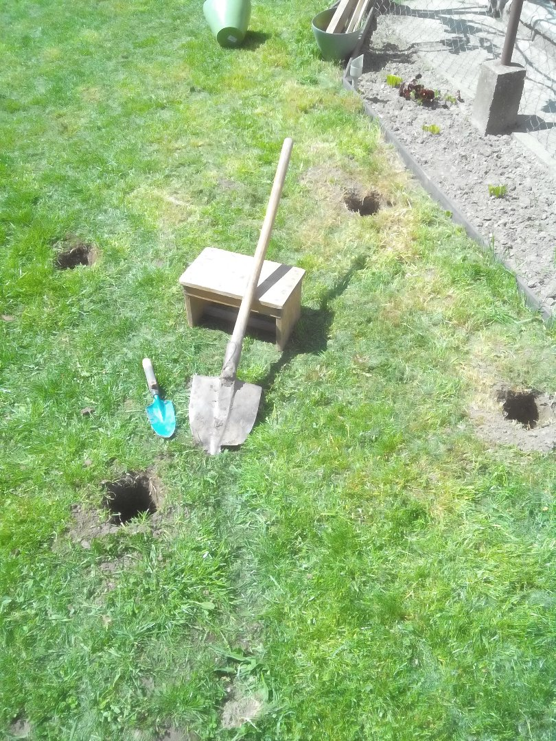 Picture of Digging Holes