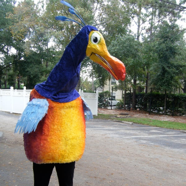 How to Create a Kevin Costume (The Bird From UP)