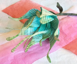 Dyeing Paper: an Exploration