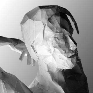 Picture of Faceted Papercraft - Curvaceous Edition + Bonus