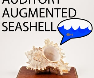 Build Your Own Auditory Augmented Seashell!