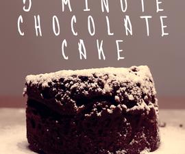 5 Minute Microwave Chocolate Cake in a Mug!
