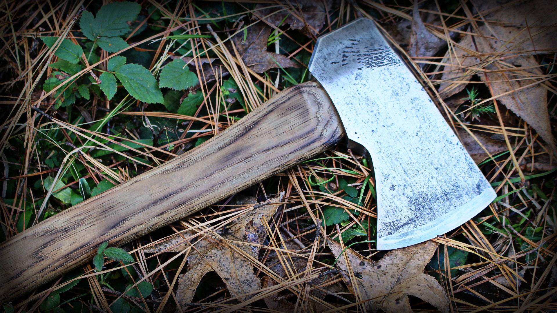 Picture of Hatchet Restoring (Viking-ish)