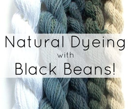 Natural Dyeing with Black Beans