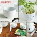 Decorative Cups (DIY)