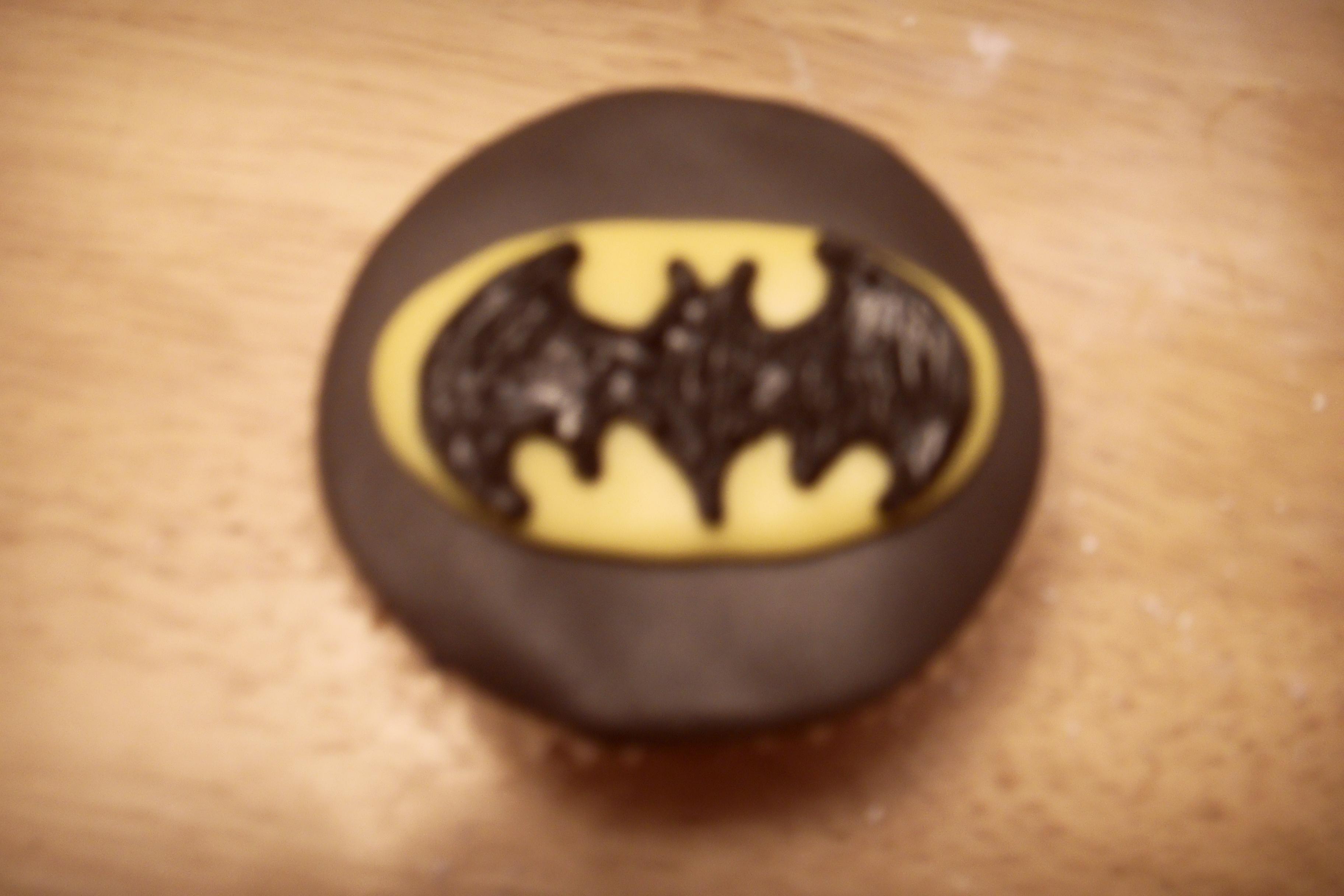 Picture of BATMAN!