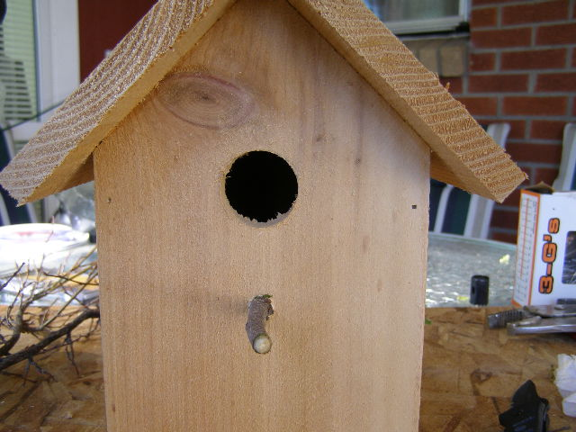 Picture of A Front Door and a Perch...
