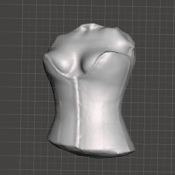 Picture of 3D Scan the Body for Custom Clothing Fashion Pattern Making, Sculptures, 3D Printed Replicas, CAD Modeling, Portrait Busts & More