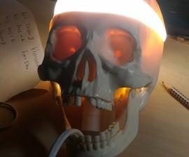 Skull Lamp!