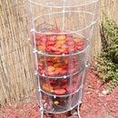 Easy tomato drying rack.