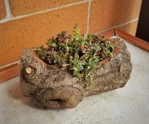 Little Log Planter