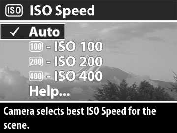 Picture of ISO Speed