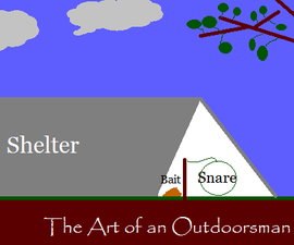 The Shelter Snare