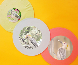Turn Old CDs Into Photo Frame