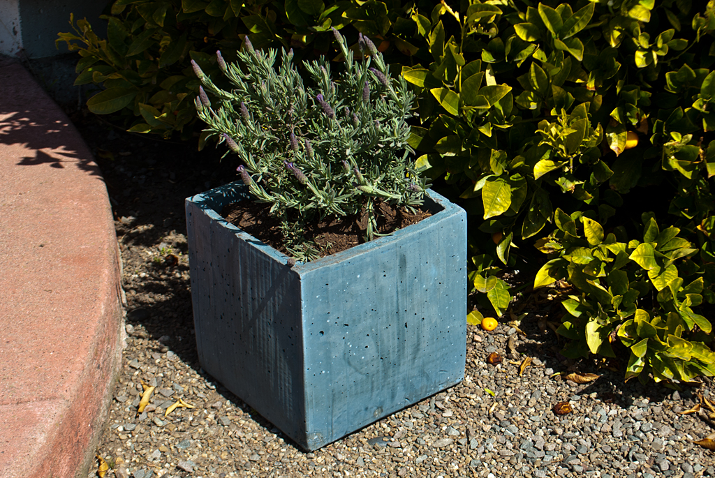 Diy Concrete Planter Box 4 Steps With Pictures