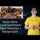 Jetson Nano Quadruped Robot Object Detection Tutorial