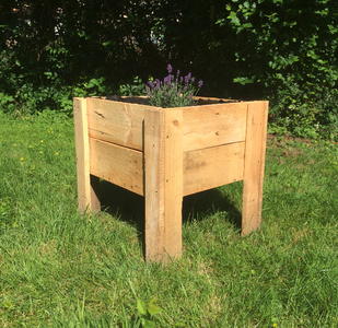 Plant Your Favorite Flowers in the Flower Box