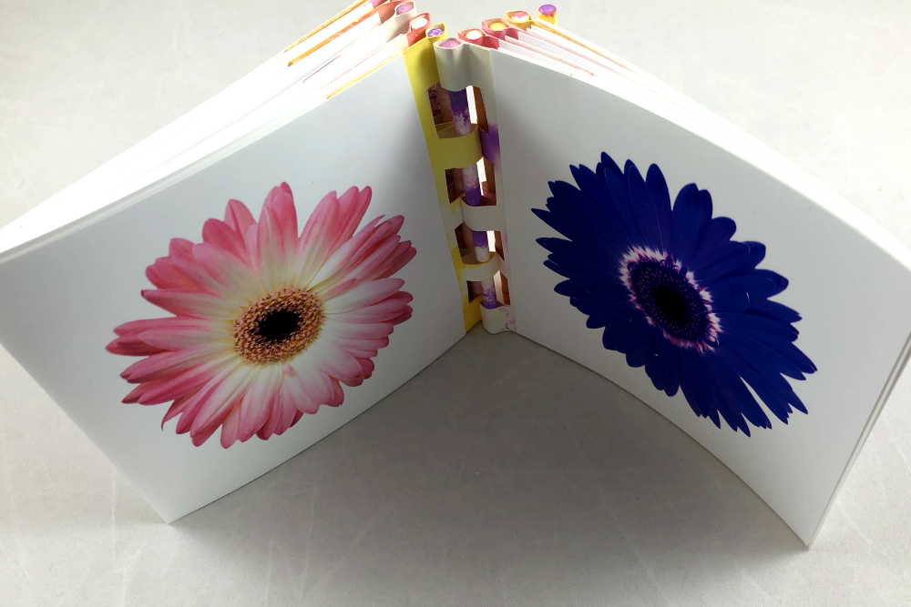 Picture of Mother's Day Bouquet Book