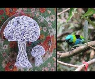 Quilling Window Decoration to Prevent Bird Crashes