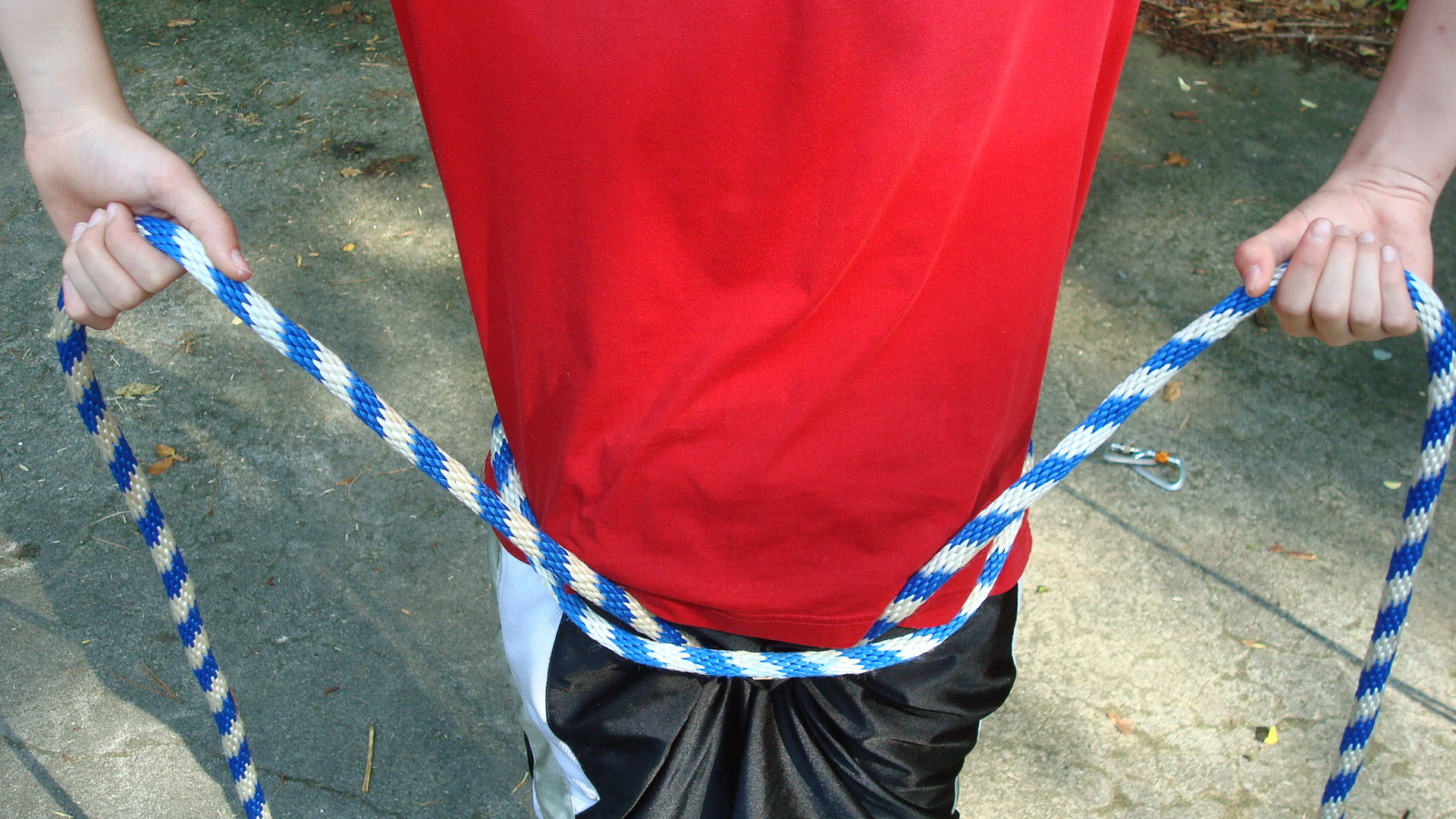 Picture of The Harness